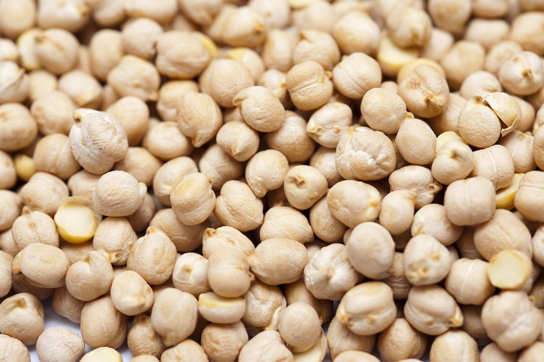 Background of chickpeas